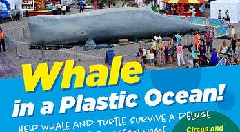 WhaleEvent_website.jpg