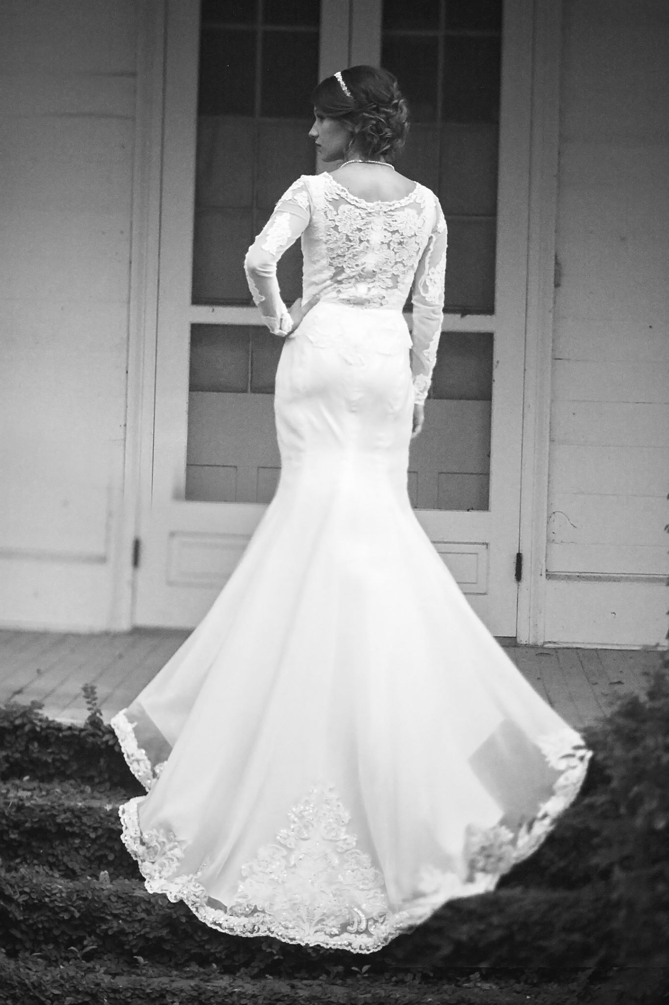Gorgeous new sheer lace back