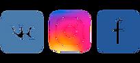 logos-of-social-networks-Vkontakte-Facebook-instagram.png