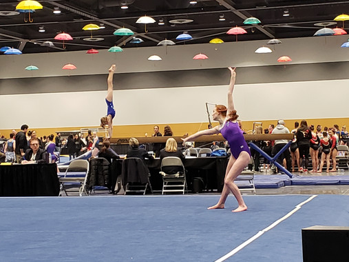 Audrey floor routine charity choice