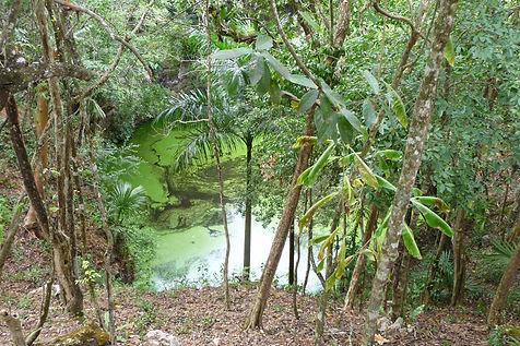 Cenote, sacrificial, Chichen Itza-1 copy