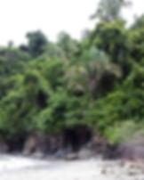 Beach in Guatemala.jpg