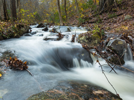 Fight Back Against Federal Efforts to Limit Clean Water Protections