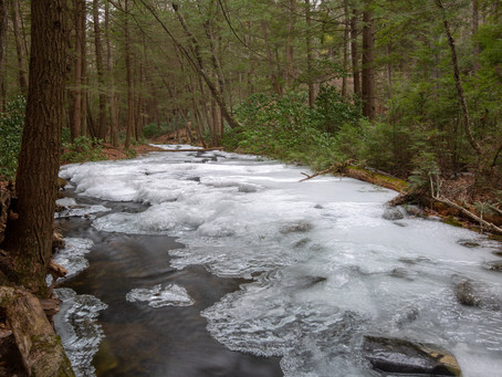 Mass Rivers Gears Up for 2020