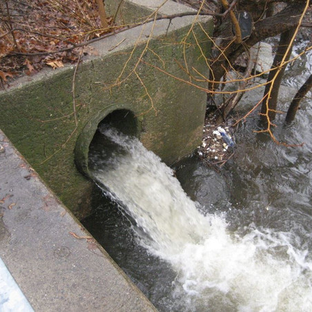 Legislators Cosponsor Sewage Pollution Notification Bill