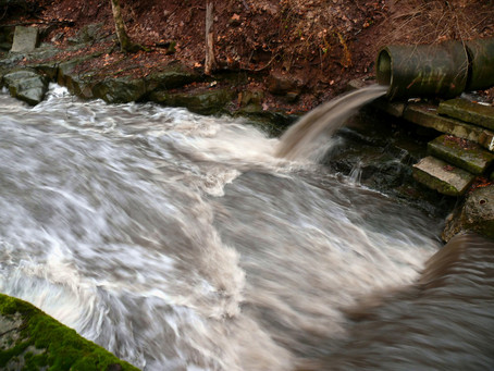 144 Local Officials Sign Letter Supporting Bill to Provide Public Warnings During Sewage Spills