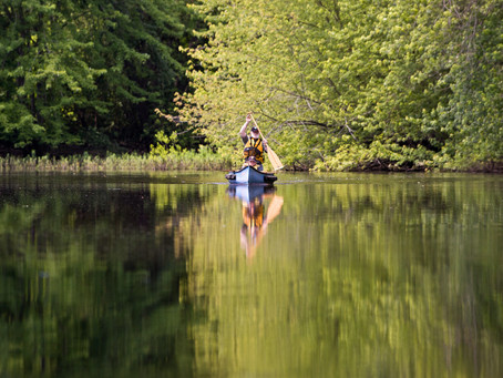 ACTION ALERT: Thank MA House Ways and Means Committee for Supporting Rivers!