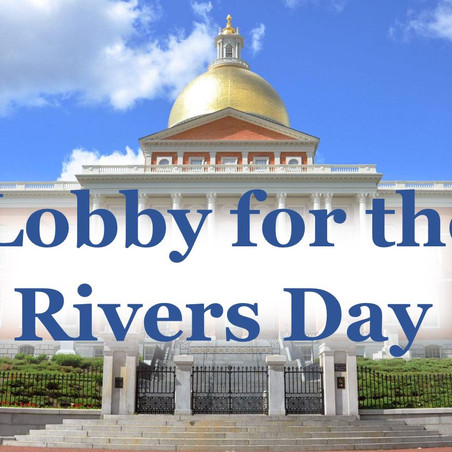 Registration open for Lobby for the Rivers Day 2019!