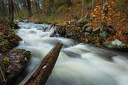 Quabbin Stream-4473.jpg