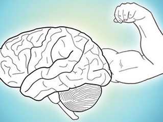 Mind, Body, and Fitness
