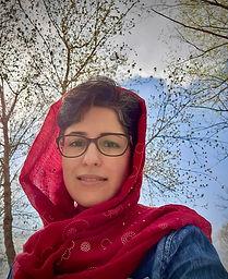 Farideh Nasib, Artist