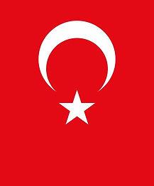 flag_of_turkey1_edited.jpg