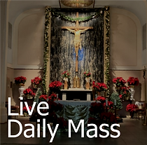 live daily mass.png
