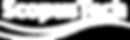 ScopusTech Logo white.png