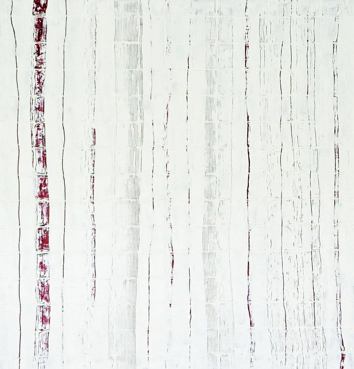 V419 WHITE RED 1