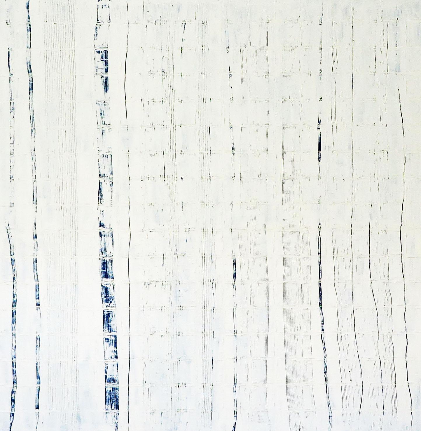 V419 WHITE BLUE 3