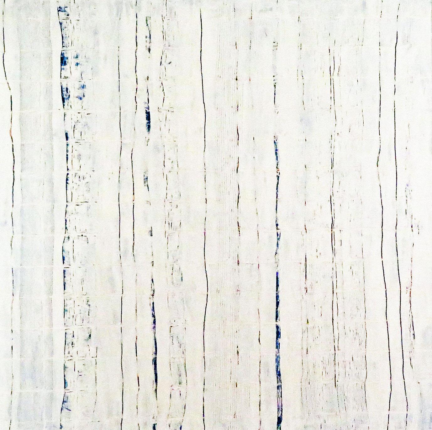 V419 WHITE BLUE 4
