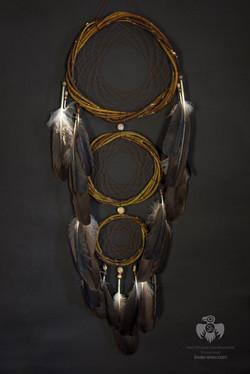Ловец снов Белоплечий орлан