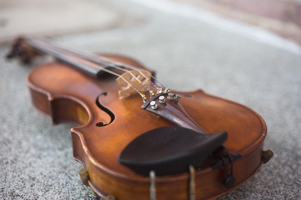 main violin.jpg