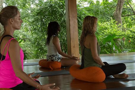 meditacion.png
