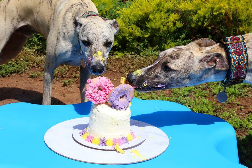 Cake 5 (3).jpg