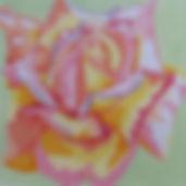 90C Harvest Rose.jpg