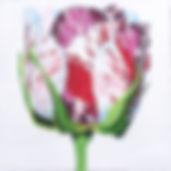 15F Painted Rose.jpg