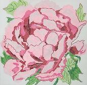 60A Lg Cabbage Rose.JPG