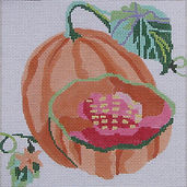 126D Sm Cantaloupe.jpg