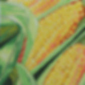 11M Farmer's Market Corn.jpg