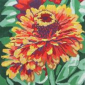 88D Large Yellow Flame Zinnia.jpg