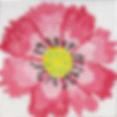 53 A-1.jpg