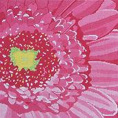 2D Pink Gerber Daisy.jpg