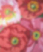 66A Shirley Poppy Rug.jpg
