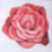 131D Rose Rug.jpg