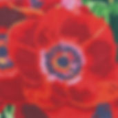 2C Red Anemone.jpg