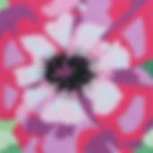56D Large Anemone.jpg