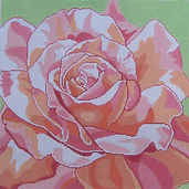 90D Summer Rose.jpg