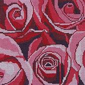 87C Sm Pink Beauty Roses.jpg
