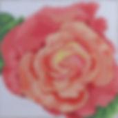 90B Coral Rose.jpg