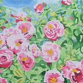104B Summer's Day- Rose.jpg