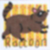 119S Raccoon.jpg