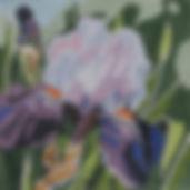 151C Summer Palette- Iris 1.jpg