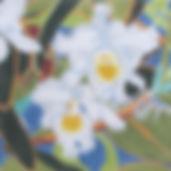 133B White Orchids.jpg
