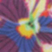2B Purple Pansy Face.jpg