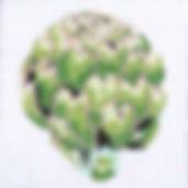 94K-4 Artichoke Coaster.jpg