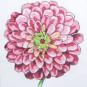 15D Regal Zinnia.jpg