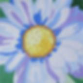 56G White Daisy.jpg