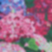 3D Hydrangea Dazzle.jpg