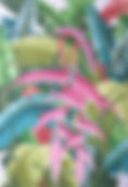 43B Jungle Orchid Rug.jpg